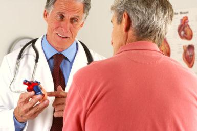 Das Herz: Funktion, Erkrankungen, Vorbeugung