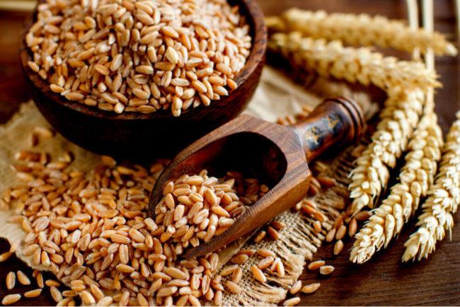 Dinkel: Ist das Urgetreide besser als Weizen?