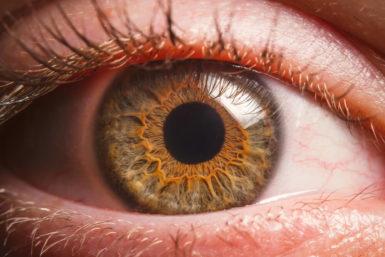 Grüner Star: Symptome, Verlauf, Vorsorge, Therapie