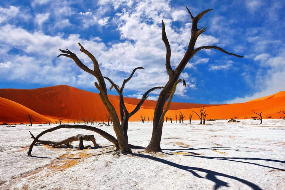 Namibia-Reiseziel-Duene-Sossusvlei-Dead-Vlei