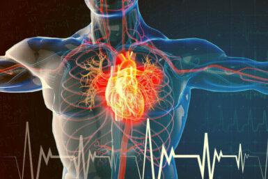 Herzinsuffizienz: Leben mit der Herzmuskelschwäche