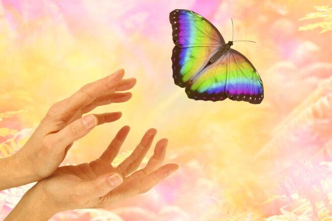Hoffnung: So erhalten Sie sie am Leben