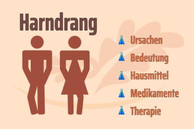 Harndrang: Ursachen, Diagnose und Therapien