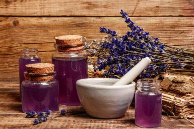 Lavendel: Alles über den duftenden Tausendsassa